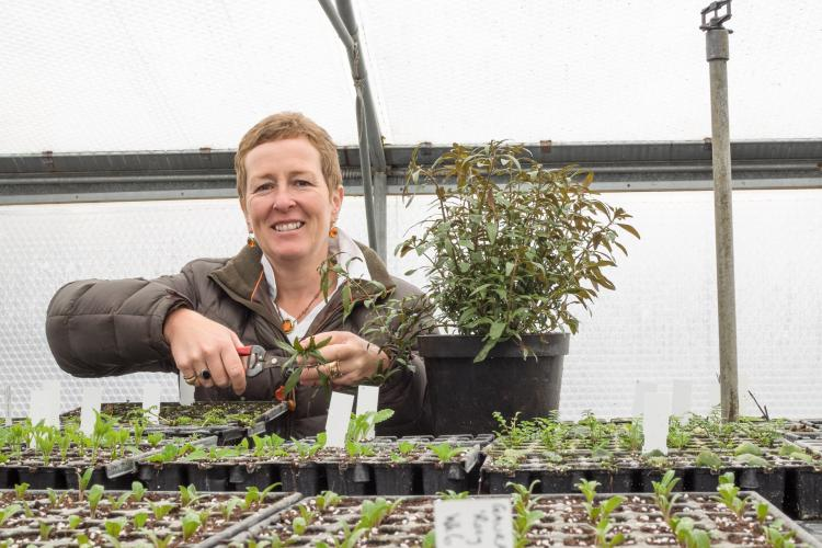 Spring Propagation Workshop with Rosy Hardy