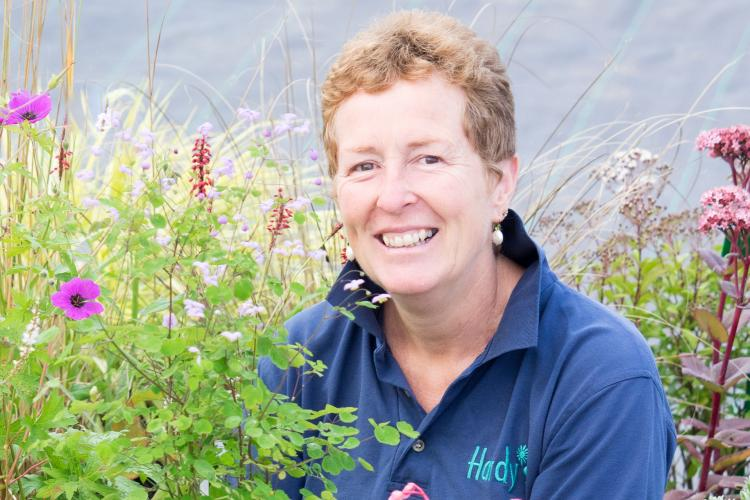 RHS Summer Perennials Talk with Rosy Hardy