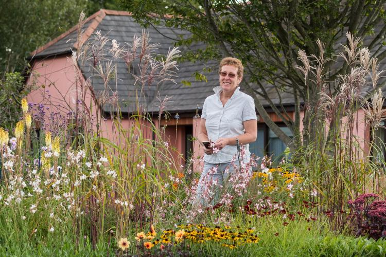 RHS Late Summer Perennials Talk with Rosy Hardy