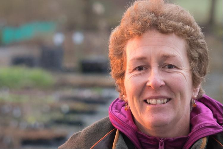 RHS Partnership talk - Early Spring Flowering Perennials with Rosy Hardy