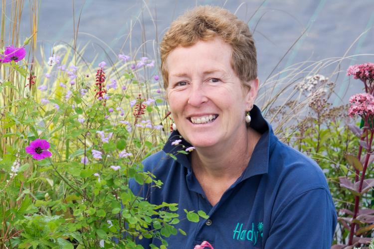 RHS Partnership talk - Summer Flowering Perennials with Rosy Hardy
