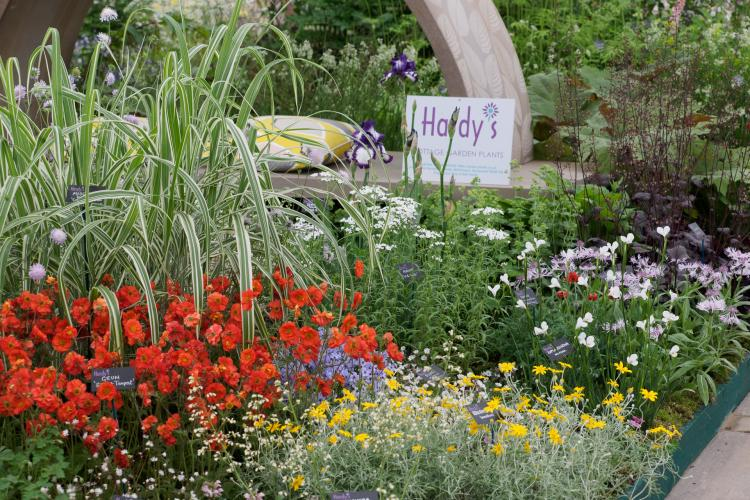 Count Down to RHS Chelsea Flower Show 2021