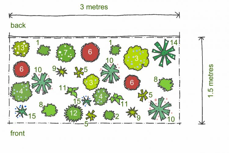 Rosy S Planting Plans